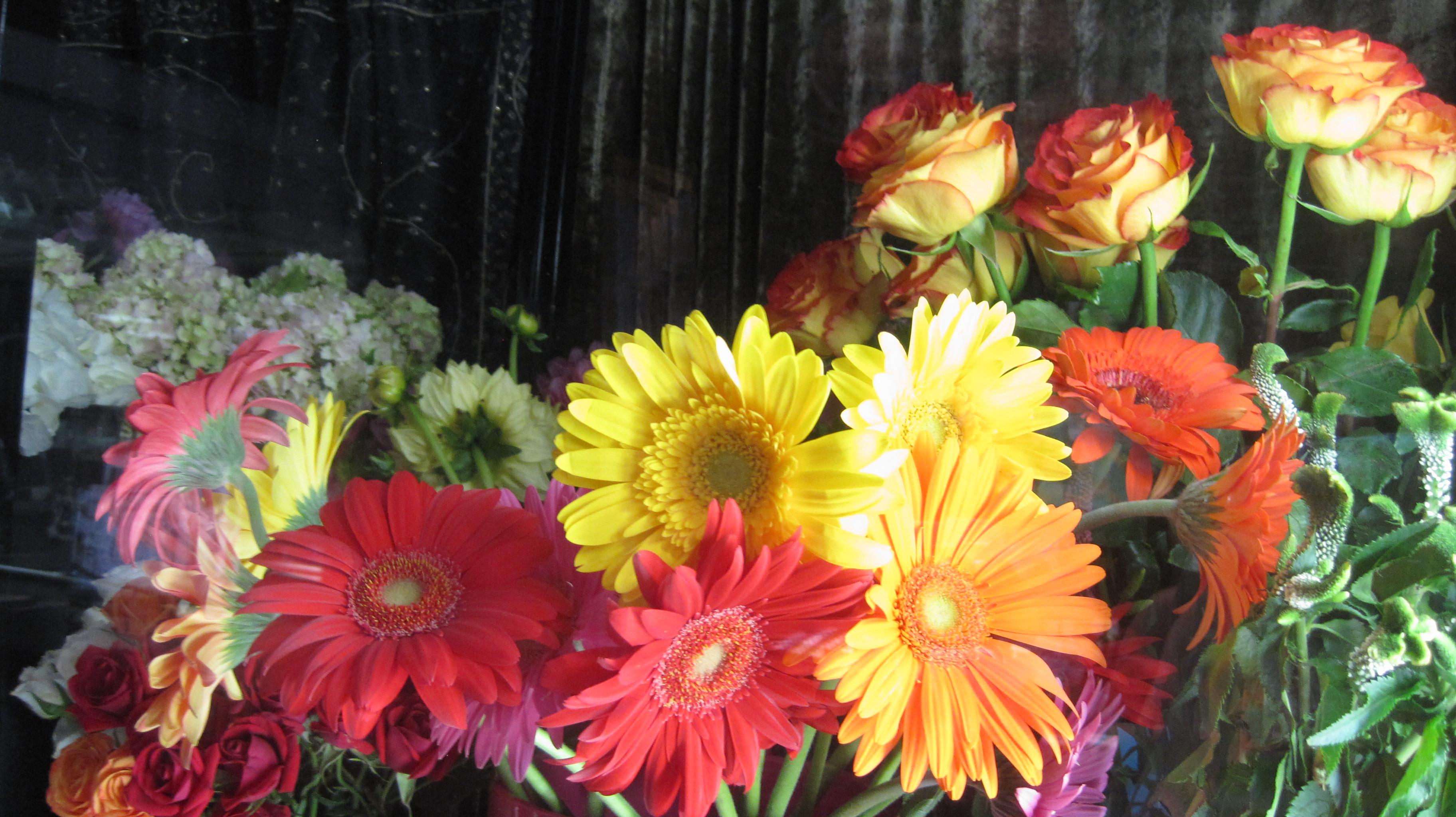 Fresh Cut Flowers in Abilene