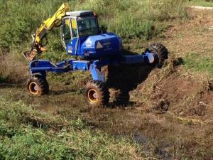 spider ditch